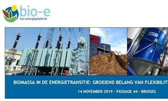BIOMASSA IN DE ENERGIETRANSITIE: GROEIEND BELANG VAN FLEXIBILITEIT EN GROENE WARMTE