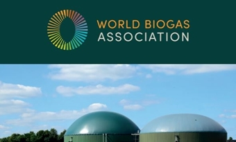 Rapport Global Potential of Biogas