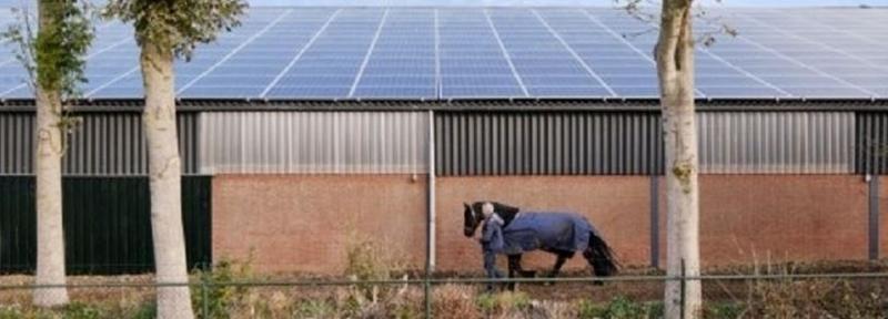 Essent gaat bij 70 agrarische bedrijven transformeren asbestdak in zonnepanelendak
