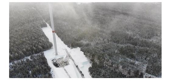 Primeur in België: windmolenpark in bosbouwgebied