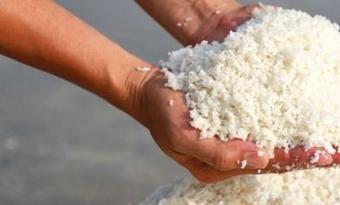 Zoutproductie Nouryon duurzamer door 'groene' stoom