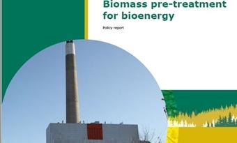 Rapport voorbehandeling biomassa voor bio-energie