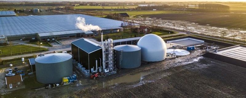 Biomassa bespaart Zeeuwse tuinders 12 miljoen kilo CO2