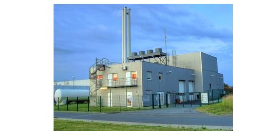 Aanbod vaste biomassa voor warmte en elektriciteit: technologisch rapport