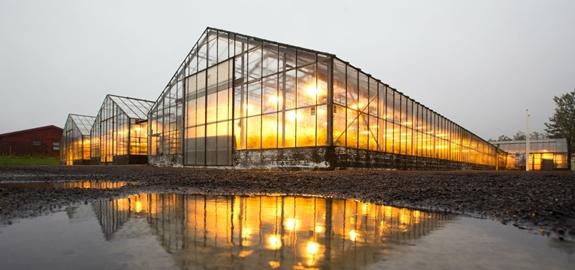 Het aanpakken van voedselzekerheid en het stimuleren van de ontwikkeling van aardwarmte