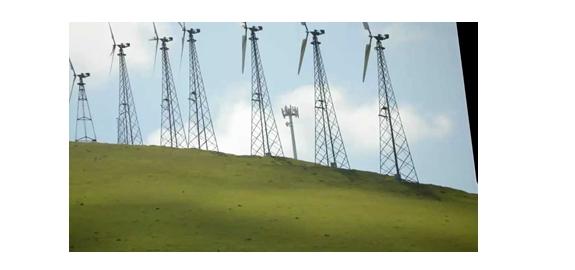 Doden windturbines vogels?