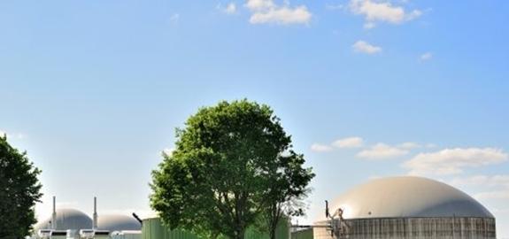Biomassa blijft de grootste bijdrage leveren aan hernieuwbare energie in Europa