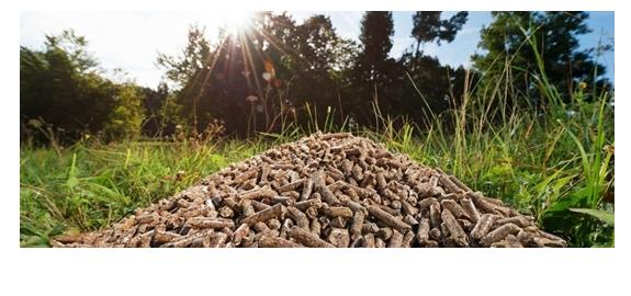 Van het aardgas af: duurzamere stadswarmte met houtsnippers