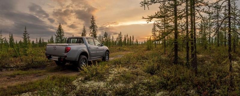 Zweedse auto's rijden op hout door Nederlandse bio-olie fabriek