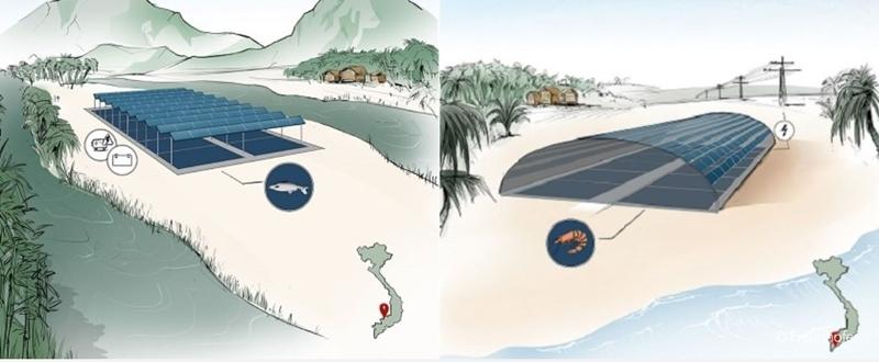 Fraunhofer gaat in Vietnam op land garnalen kweken onder zonnepanelen