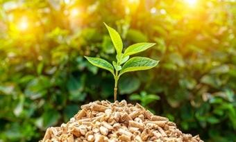 """Het decarboniseringspotentieel van de verwarmings- en de koelingssector """"over het hoofd gezien"""", zegt Bioenergy Europe"""