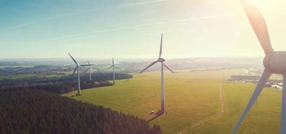 Grootste windpark van Nederland is geopend
