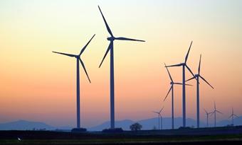 """Uit Deens onderzoek blijkt dat """"bijna geen vogels"""" sterven bij botsingen met windturbines"""