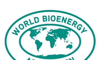 Het WBA Global Bioenergy Statistics 2020 rapport