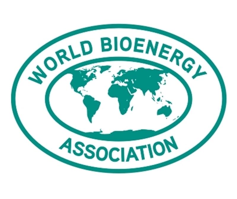 Het WBA Global Bioenergy Statistics 2020 rapport