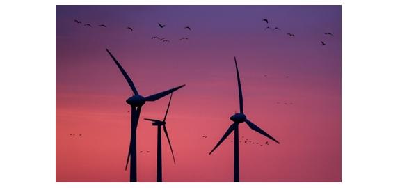 Windkracht stuwt investeringen in hernieuwbare energie
