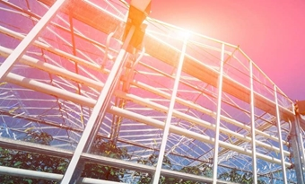 Energieneutrale kas dankzij transparante zonnecellen