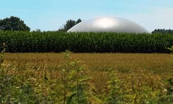 Vooruitzichten voor biogas en biomethaan: Vooruitzichten voor organische groei
