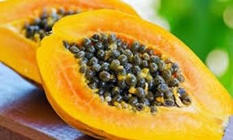 Onderzoekers TU Delft maken zonnecellen met behulp van enzymen uit papaja's