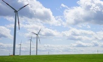 Windenergie was in 2020 goed voor 16% van de elektriciteit in de EU, ondanks vertragingen door COVID