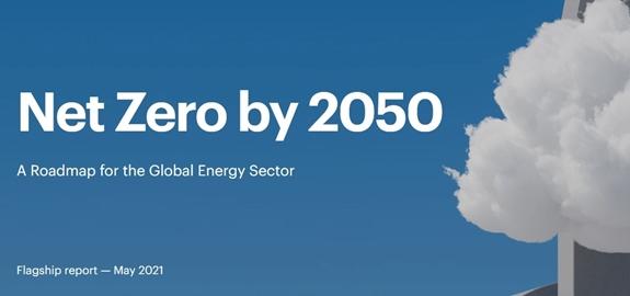"""Wat betekent """"nuluitstoot tegen 2050"""" voor bio-energie en landgebruik"""