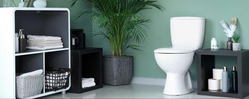 Koreaanse WC maakt groen gas van poep van studenten. Is dit de oplossing voor duurzame verwarming?