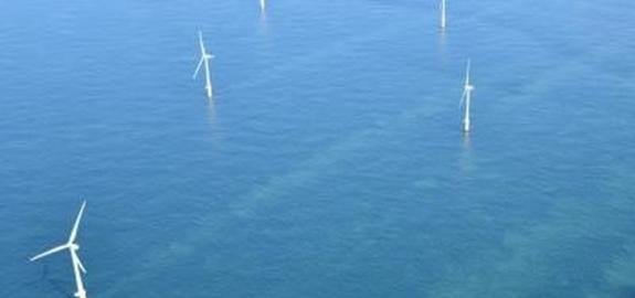 Windparken op zee verhogen de koolstofopslag in zeebodems – bruikbare kennis voor mariene ruimtelijke ordening en klimaatveranderingsmodellen